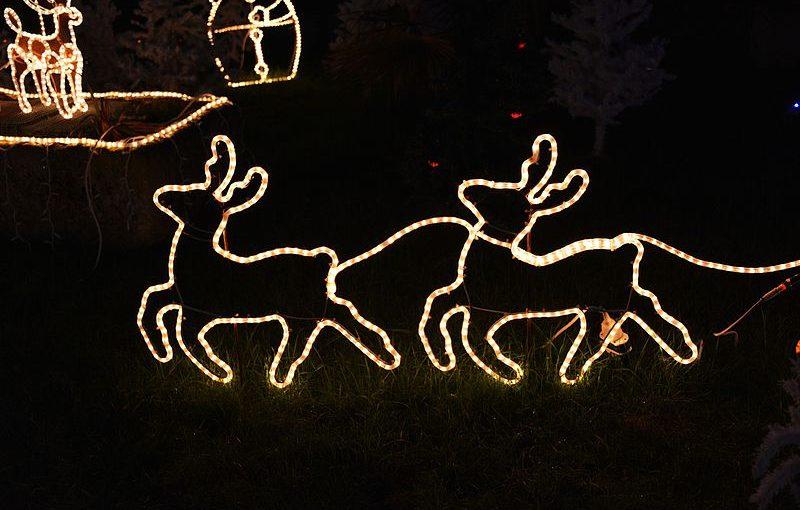 De merveilleuses fêtes de fin d'année à vous
